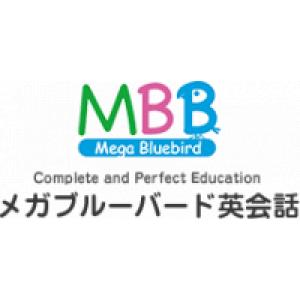 Mega Blue Bird International