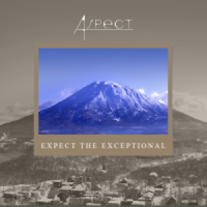 Aspect Properties Japan GK
