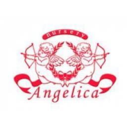 Angelica Nursery - 株式会社アンジェリカ
