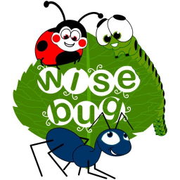 Wisebug English